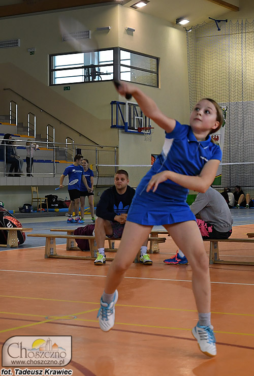 DSC_4110_badminton2017.jpg