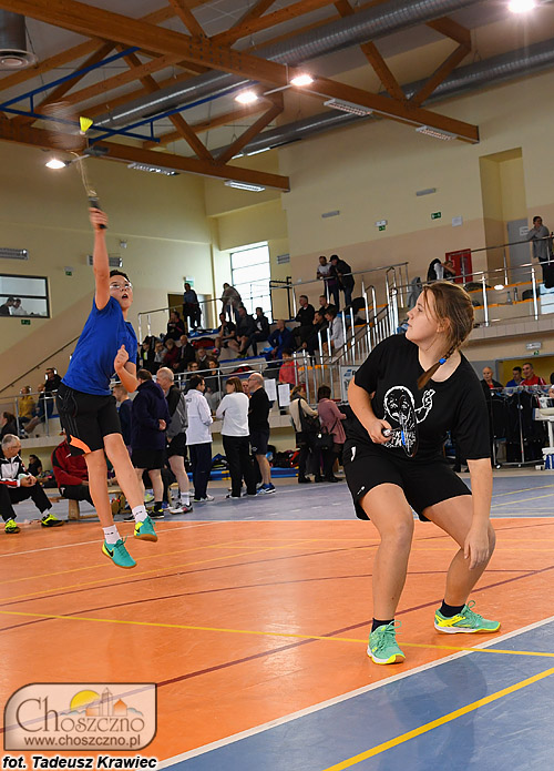 DSC_4426_badminton2017.jpg